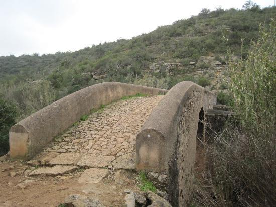 Ponte Medieval de Paderne: Bridge at Paderne