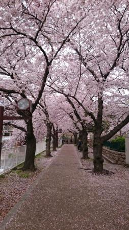 Togagawa Park