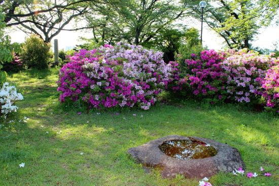 Minami Shiga Town Former Temple Historic Site