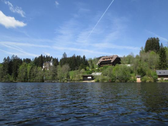 Titisee: Lakeside view from a boat