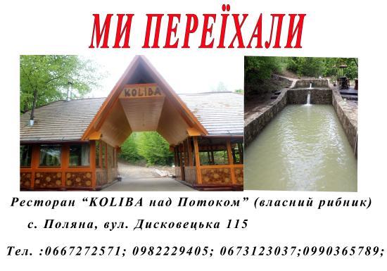 Polyana, ยูเครน: Друзі,ми переїхали.