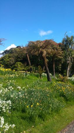 Port Logan, UK: Logan Botanic Garden