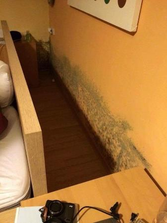 Haus Schmidhofer: Behind beds and hidden with rugs...