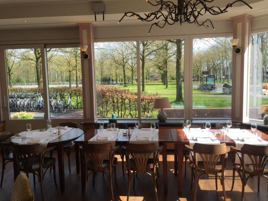 Zuidlaren, Belanda: Ñ