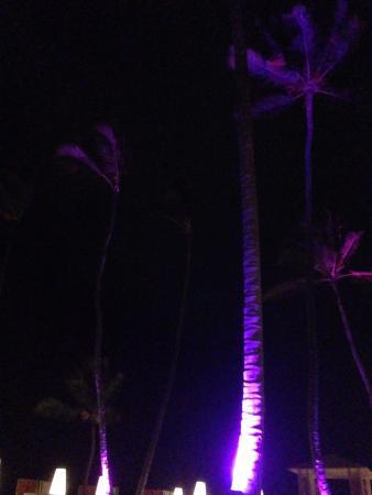 Paradisus Punta Cana: Plage le soir