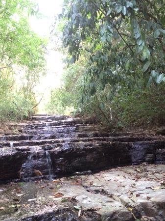 Waterfall Villas: Waterfalls