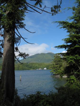 Water's Edge Shoreside Suites: Blick von unserer Terrasse