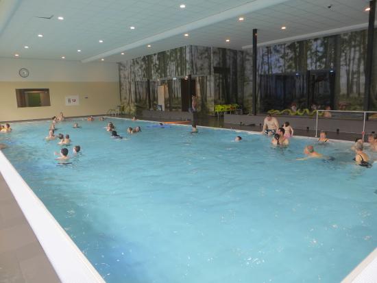 subtropisch zwembad overloon