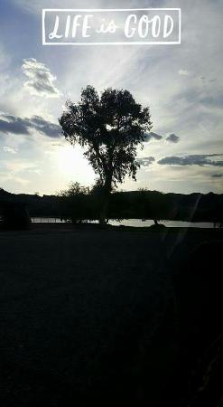 Buckskin Mountain State Park: FB_IMG_1462032198906_large.jpg