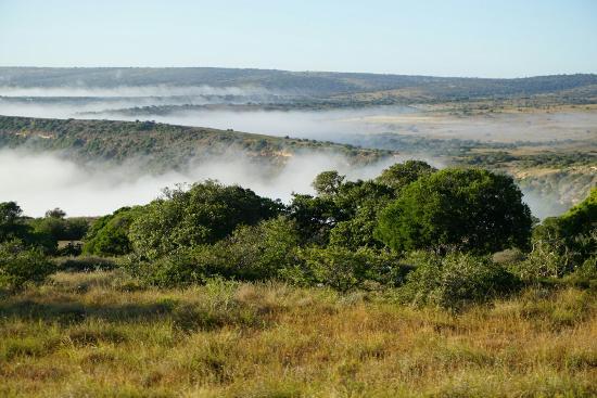 Grahamstown, Republika Południowej Afryki: DSC00813_large.jpg