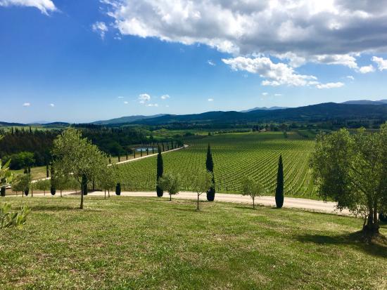 Gavorrano, Italia: photo1.jpg