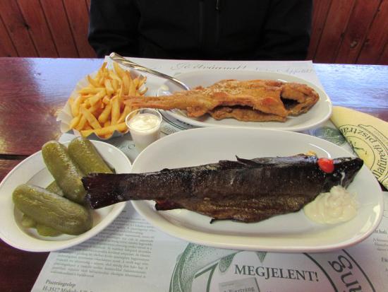 Lillafured, Ungarn: A hátsó hal az aranyos pisztráng fokhagymsá bundában, a másik hal a füstölt pisztráng.