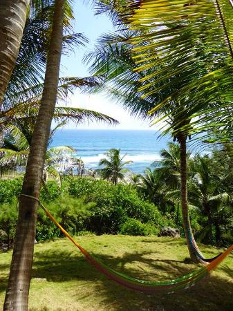 Sea-U Guest House: The fantastic view and hammocks from the Guesthouse