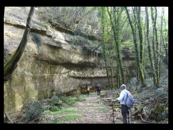 San Vivaldo, Włochy: Sandstone cliffs up to 20 meters high, carved by the Carfalo creek