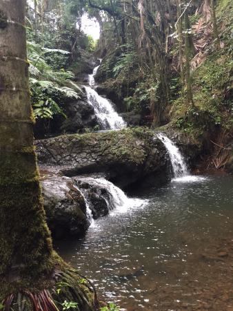 Papaikou, Hawái: Waterfall