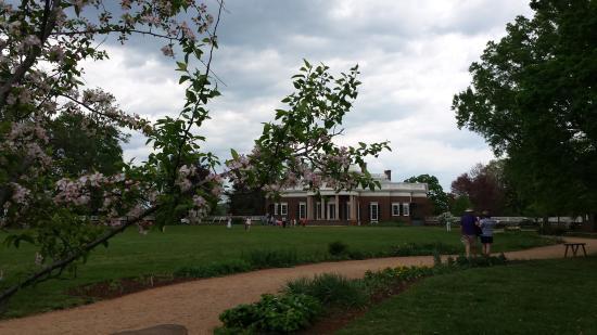 Шарлоттсвилль, Вирджиния: Monticello and blooms