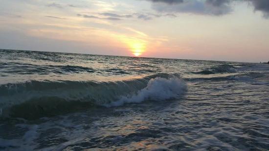 Placida, FL: FB_IMG_1462059051077_large.jpg