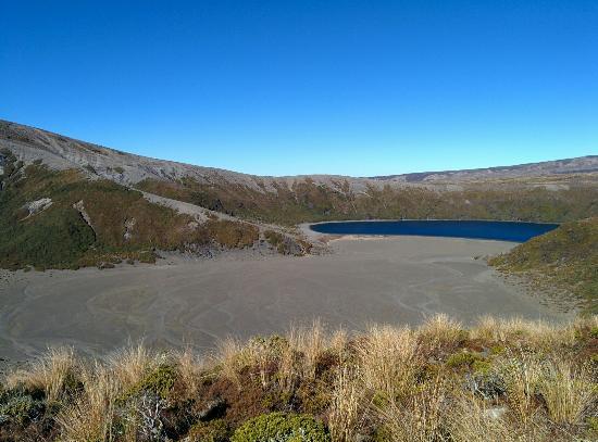 Whakapapa, Nuova Zelanda: IMG_20160429_135149_large.jpg