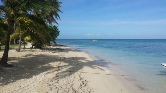 Plantation Island Resort: 20160423_085326_large.jpg