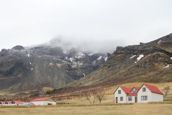 Guesthouse litla hof hofn island ranch anmeldelser for Guesthouse hof island
