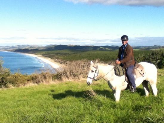 Pakiri Beach Horse Rides - Day Tours: half through a full day ride at the point