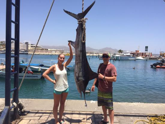 Wife 39 s first dorado picture of top anglers sportfishing for Cabo san lucas fishing charters prices