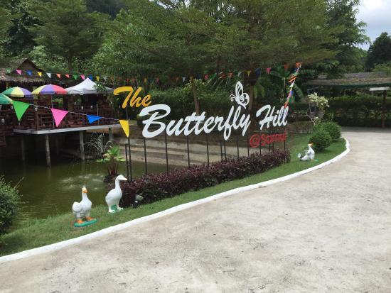 Samui Butterfly Garden: photo2.jpg