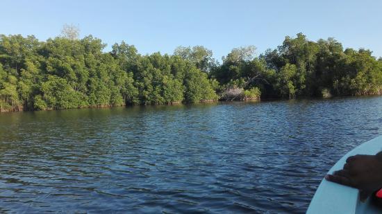 Laguna de Manialtepec: IMG_20160428_184501_large.jpg