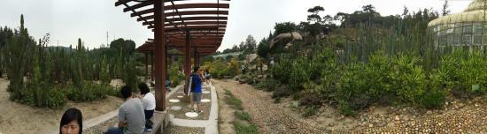 Xiamen Botanical Garden: Like it here! 🌵