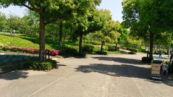 二上山ふるさと公園 Image