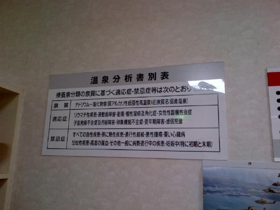 North Hotel: 温泉成分表