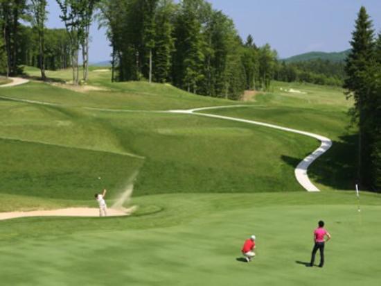 Оточец, Словения: Golf Grad Otocec