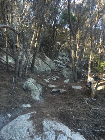 Flinders Island, Australien: photo4.jpg