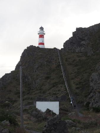 Wairarapa, Selandia Baru: the stairs to the lighthouse