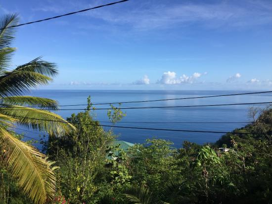 Nature's Paradise: Blick von der Terrasse