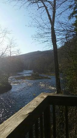 Cheat River Lodge and Riverside Cabins Photo