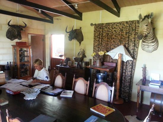 Addo, Sudáfrica: Die Chefin bei der Arbeit
