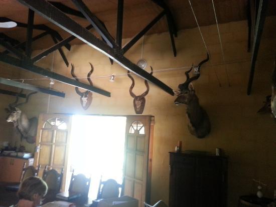 Addo, Sudáfrica: ein Zimmer in der Lodge