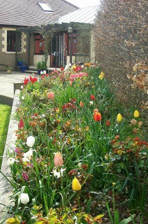 Stoke Fleming, UK: Garden