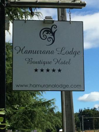 Hamurana Lodge Picture
