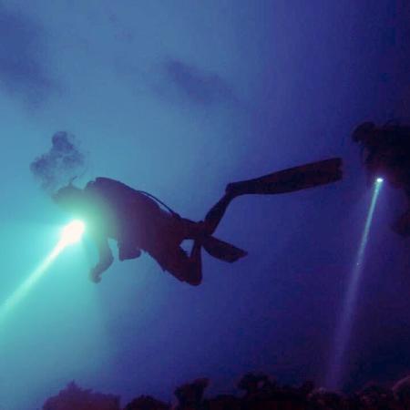 Island Divers : photo4.jpg