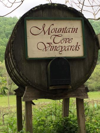 Mountain Cove Vineyards: photo0.jpg