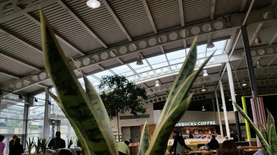 welcome break south mimms plastic plants and starbucks monopoly