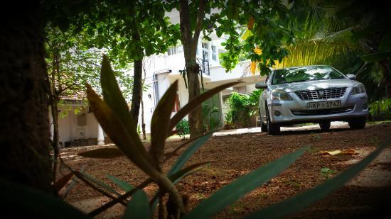 Nooit Gedacht Holiday Resort : garden