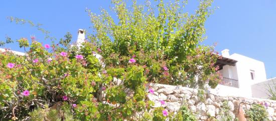 Santa Agnes de Corona, Spain: Romantic Rural Hotel Ibiza Can Pujolet