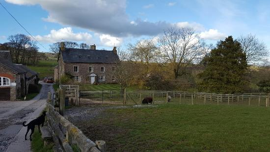 Werngochlyn Farm