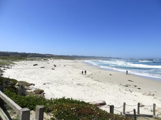 Asilomar State Beach: Cross the street for more of this park.