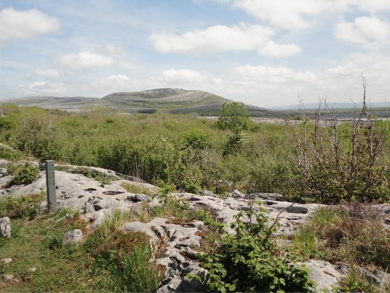 Corofin, Irland: The Burren National Park