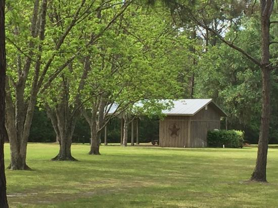 Waverly, GA: Beautiful acreage with so much to do!
