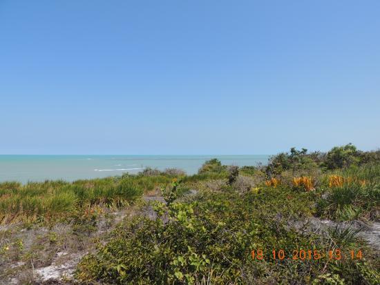 Imbassuaba Beach (Arnaldo): Imbassuaba vista das falésias